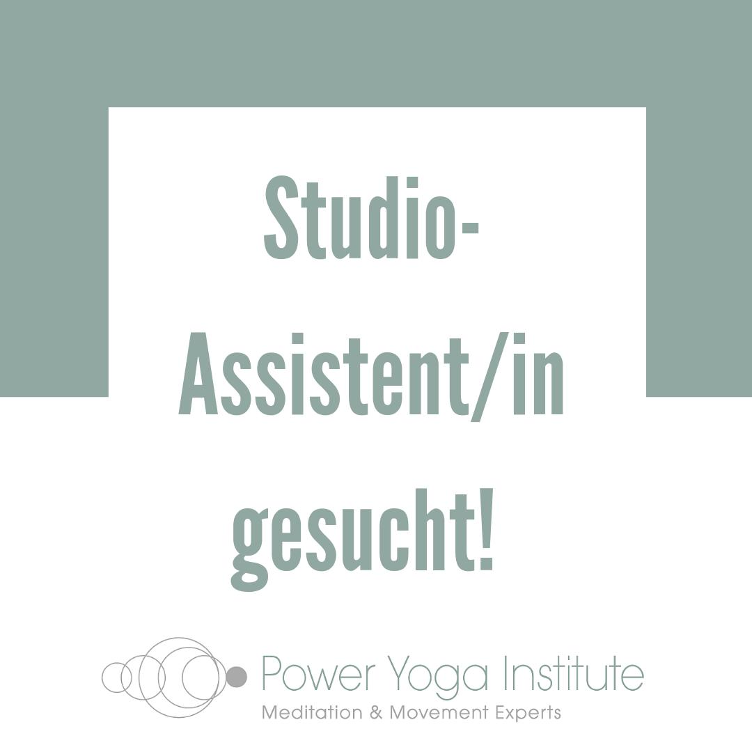 Studio-Assistent/in gesucht!